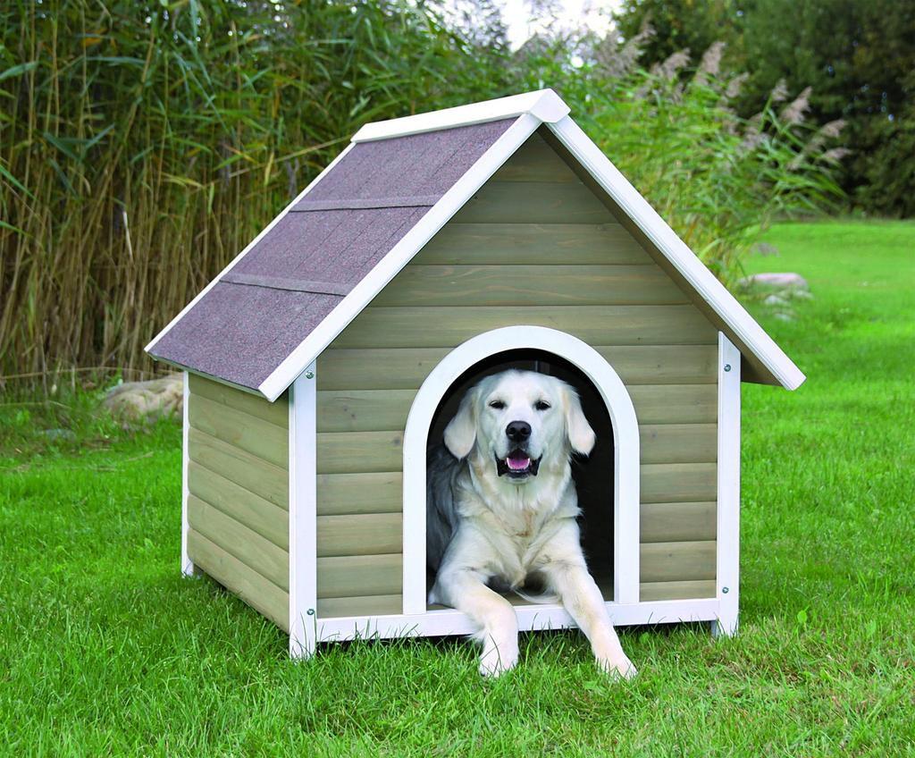 Будка для собаки своими руками: пошаговая инструкция создания жилья для пса